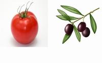 Confit olives et Tomates Sechées La Bagna Rotou 90 g