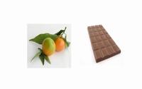 Oranges amères au chocolat 200 g  pot de 200 g
