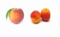 Confiture de peches abricots 200 g  pot de 200 g